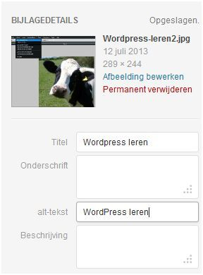 website maken wordpress