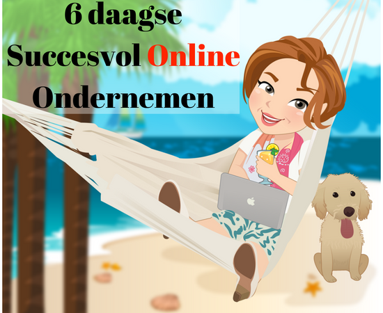 6 daagseSuccesvol Online Ondernemen(1)